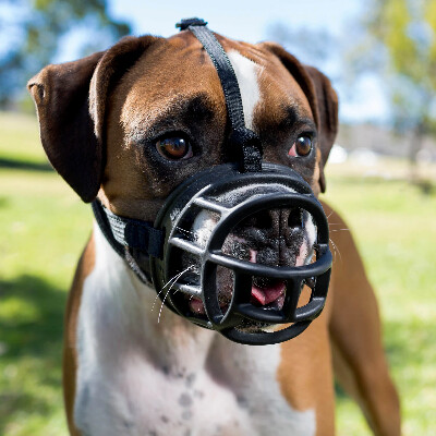 buy Halti-Baskerville-Ultra-Muzzles-For-Dogs
