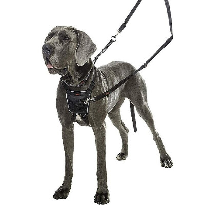 buy Halti-No-Pull-Harness-For-Dogs