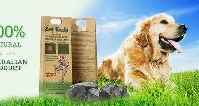 Dog Rocks (Lawn Burning Prevention)