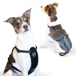 TRAVEL SAFETY HARNESS for Dogs by K and H