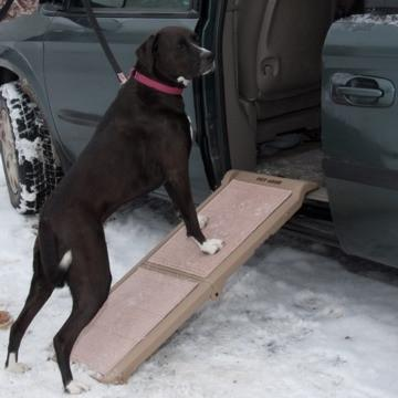 PET RAMPS by Pet Gear