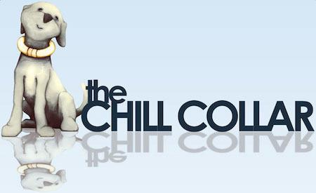 CHILL COLLAR - Small, Medium, Large, X-Large by Comfy Cone