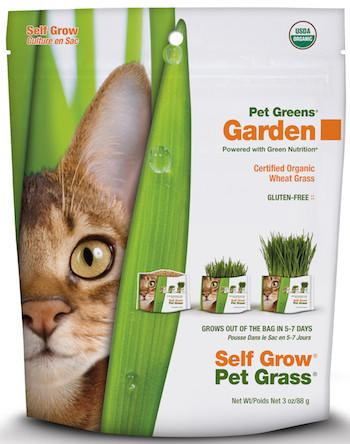 PET GREENS (By Bell Rock Growers) - Wheat Grass Self Grow Kit / Medley Self Grow Garden Kit
