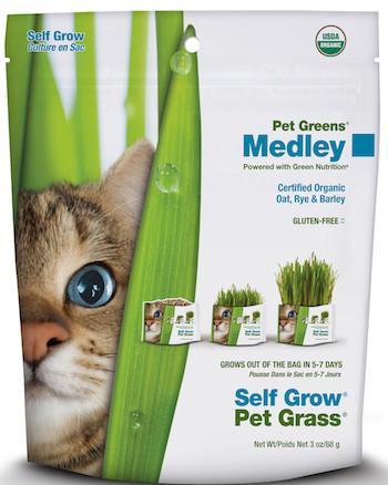 PET GREENS (By Bell Rock Growers) - Wheat Grass Self Grow Kit / Medley Self Grow Garden Kit