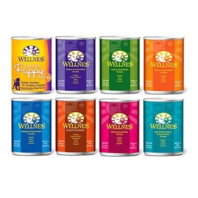Buy Wellness Canned All Flavours