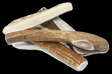 DEER ANTLERS by Prairie Dog Pet Products