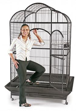 PREVUE HENDRYX Parrot and Macaw Bird Cage Model Silverado 03155