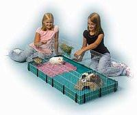 MIDWEST Guinea Pig Habitat and Accessories