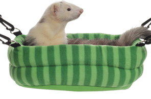 Marshall 2 in 1 Ferret Bed