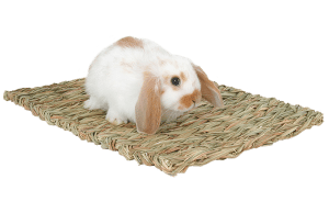 Marshall Woven Grass Mat for Small Animals
