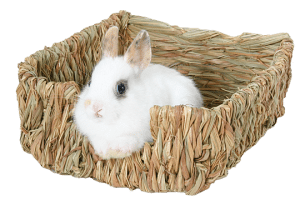 Marshall Woven Pet Bed for Small Animals