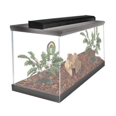 Zilla Slimlines Reptile Lighting for Terrariums