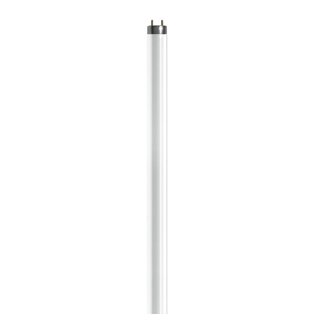 Zilla T8 Fluorescent Light Bulbs For Terrarium Lighting