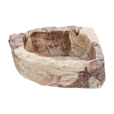 Flukers-Corner-Rock-Dish-Bowl-for-Hermit-Crabs