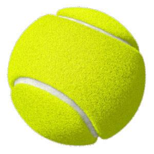 Fetch'Erz Tennis Balls Dog Toys
