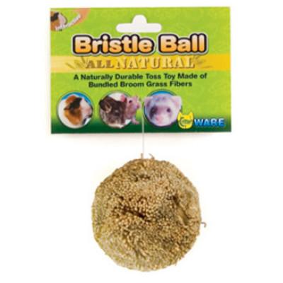 buy Ware Bristle Ball For Small Animals