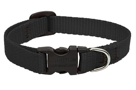 Lupine Pet Basic Adjustable Collars for Cats and Dogs