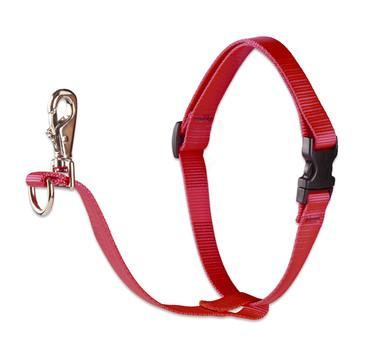 Lupine Pet No Pull Harness for Dogs