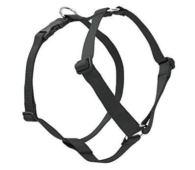 Lupine Pet Roman Style  Adjustable Dog Harness