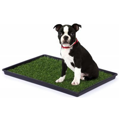Prevue Hendryx Tinkle Turf Reusable Dog Pee Pads