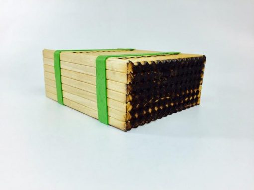 Crown Bees Medium Leafcutter Bee Wood Trays