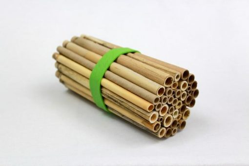 Crown Bees Pollinator Pack Nesting Hole Tubes for Bees