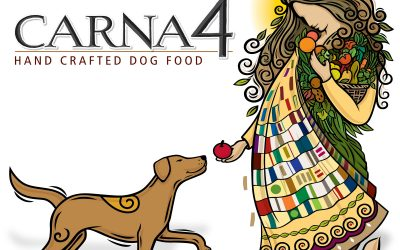 Introducing Carna4: Pet Food Innovation at its Finest