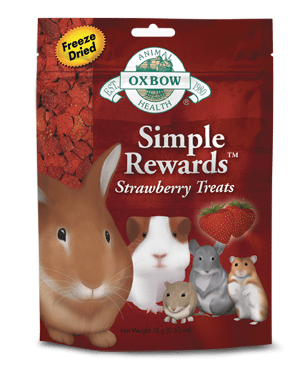 Buy Oxbow Simple Rewards Strawberry Treats online in Canada