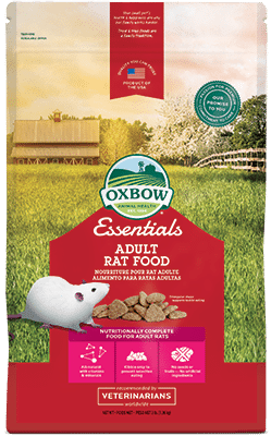 Buy Oxbow Essentials Adult Rat Food online in Canada