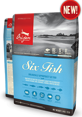 ORIJEN 6 Fish Grain Free Dry Cat Food for All Ages