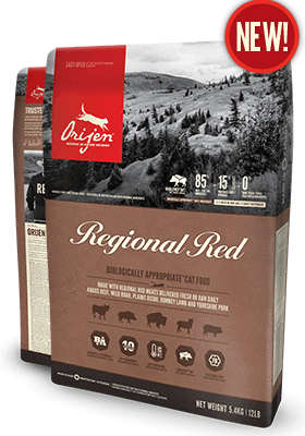ORIJEN Regional Red Cat Dry Food