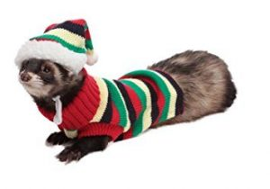 Buy Marshall Ferret Sweater online in Canada at Canadian Pet Connection