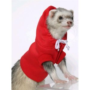 Ferret clothing online Canada at Canadian Pet Connection