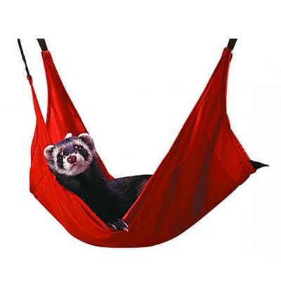 Marshall Ferret Leisure Lounge Hammock for Ferrets