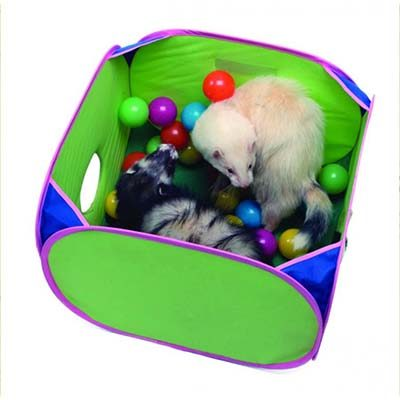 Marshall Ferret Pop-N-Play Ball Pit for Ferrets