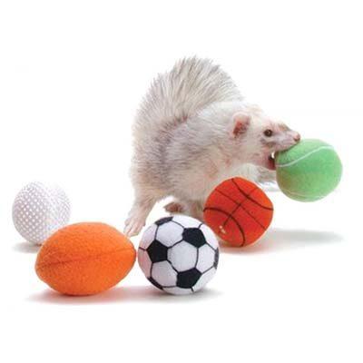 Marshall Sports Balls Ferret Toys