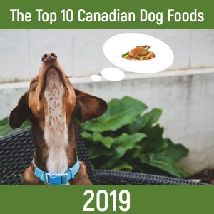 The Top 10 Dog Foods In Canada For 2019 Canadian Pet Connection