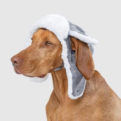 Buy Canada Pooch Arctic Air Hat Grey
