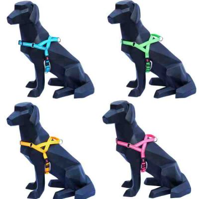 Buy Wigzi Dog Harness All Colours Canada