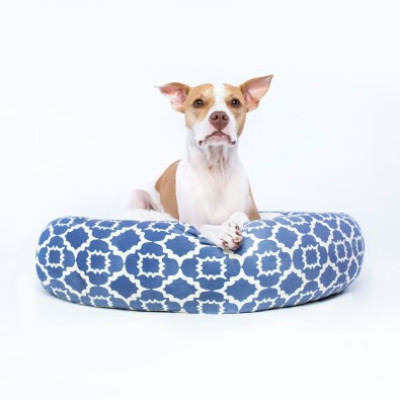 Buy Canada Pooch Birch Bed Periwinkle Blue