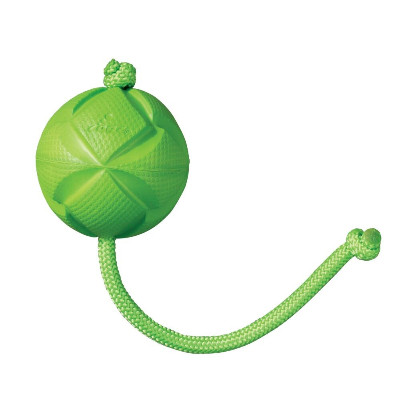 Buy Kong Rogz Flingz Ball with Rope