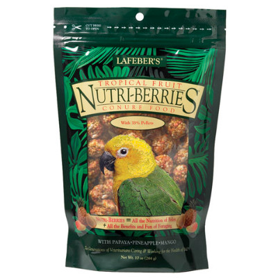buy Lafebers Gourmet Tropical Fruit Nutri-Berries For Conures