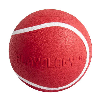 Buy Playology Scented Squeaky Chew Dog Ball Beef