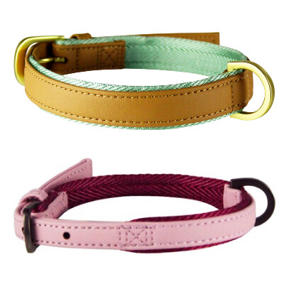 buy Be-One-Breed-Urban-Chic-Collars-For-Dogs