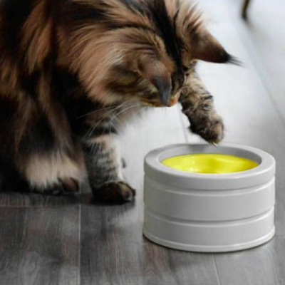 buy be-one-breed-intellikat-interactive-bowl-for-cats
