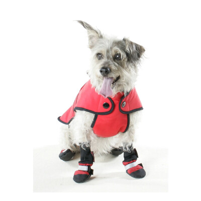buy Mutlocks-Belted-Coat-for-Dogs-Red