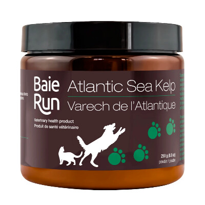 buy Baie-Run-Atlantic-Sea-Kelp-For-Pets