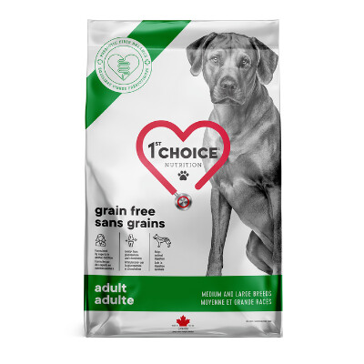 buy 1st-Choice-Adult-Medium-and-Large-Breed-Grain-Free-Chicken-Dog-Food