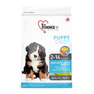 buy 1st-Choice-Puppy-Medium-and-Large-Breed-Chicken-Dog-Food