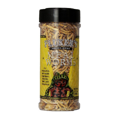 buy Flukers-Freeze-Dried-Mealworms-Reptile-Treats